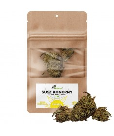 Susz konopny CBD 5% Holiday 1g